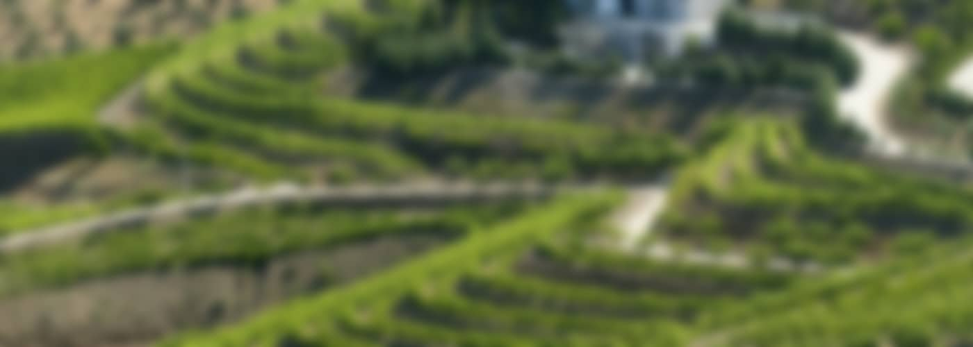 2020 Azevedo Vinho Verde