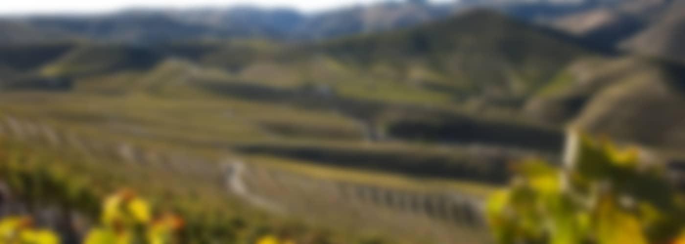 2018 Casa Ferreirinha Vinha Grande
