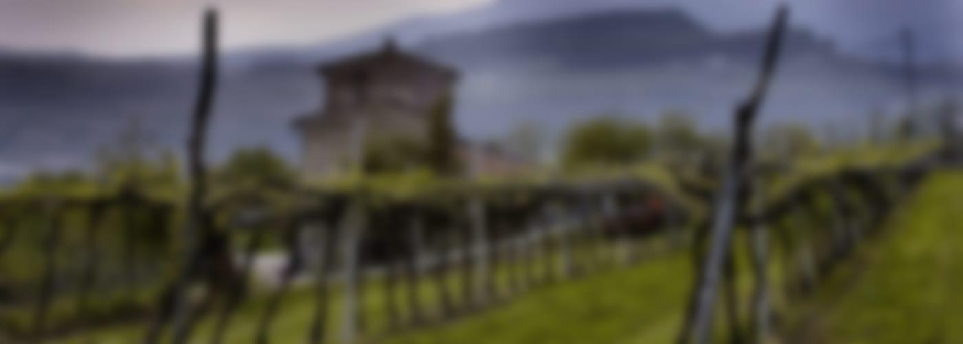 2015 Masi Riserva Costasera Amarone della Valpolicella Classico