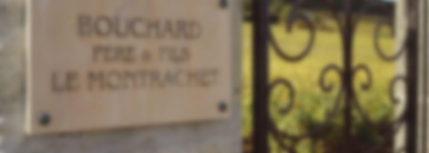 2016 Bouchard Père & Fils Corton Charlemagne Grand Cru