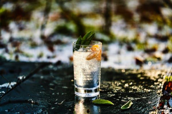 The Botanist Cocktail Tonic Clementine & Salbei gemixt