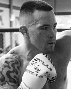 Fight Stat Wrap: UFC 225 Recap