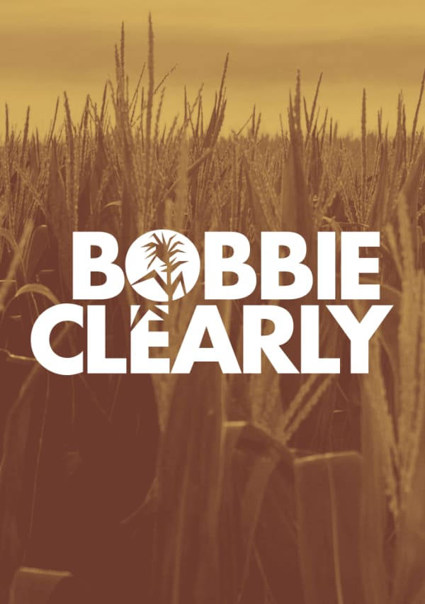 Artwork for Bobbie Clearly