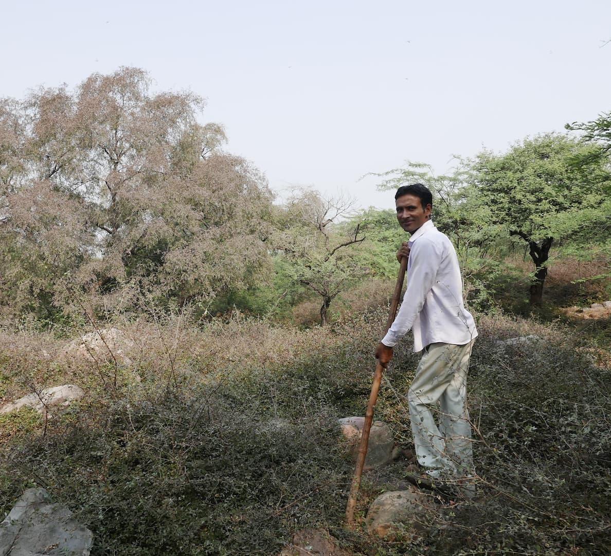 Sunil Harsana, the Pied Piper of Mangar Bani Forest