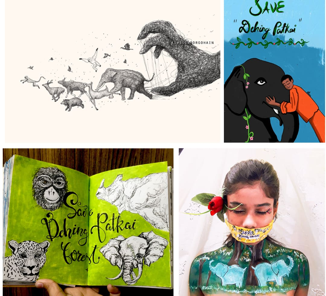 Art for Dehing Patkai: Amazon of the East