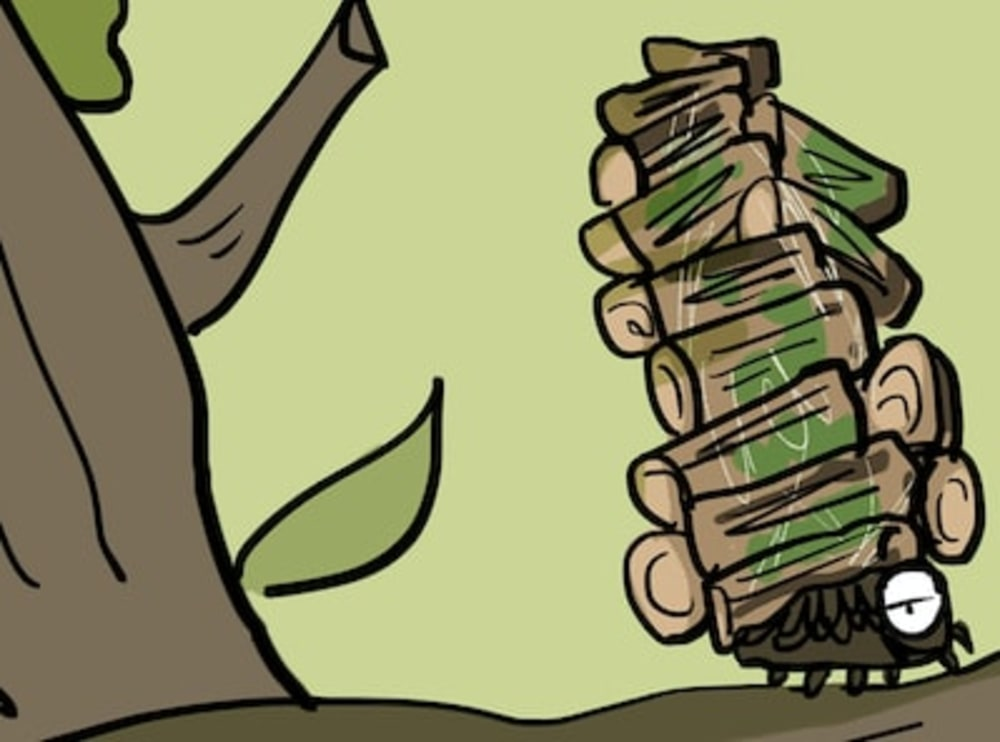 Got baggage? The Bagworm has Some Advice for You