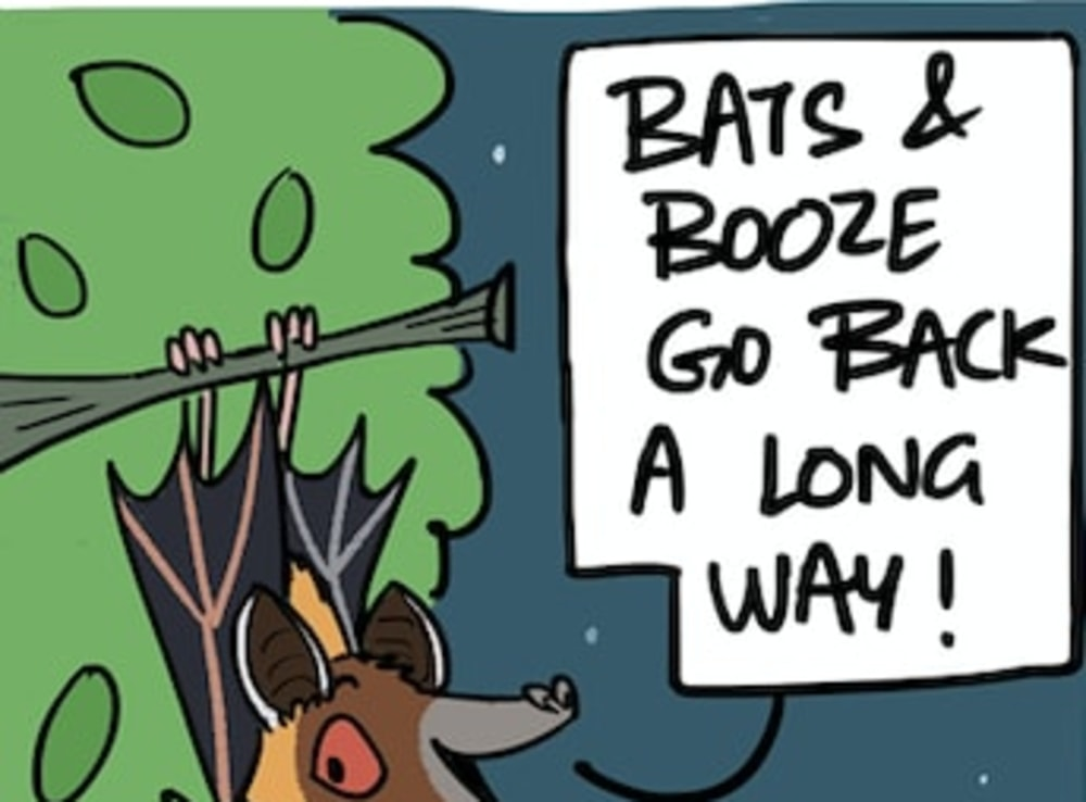 Bats and Booze Go Way Back