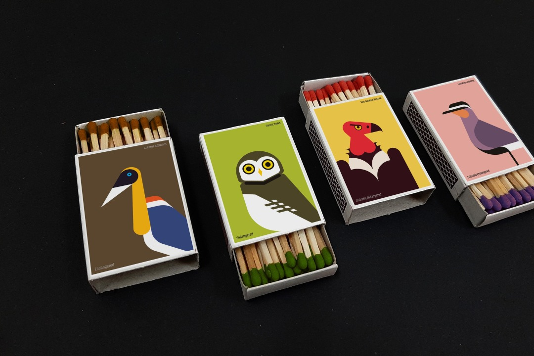 Matchbox Art: Kindling the Fire to Save Endangered Birds