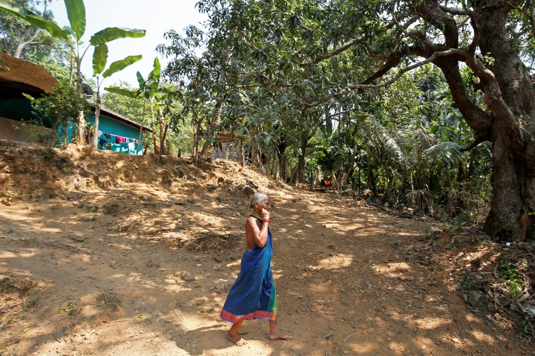 Tulasi Gowda: How She Brings Forests to Life