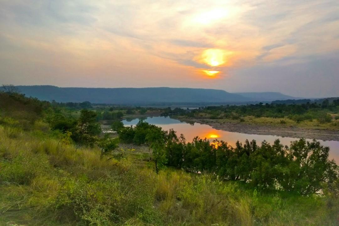 Stepped Splendour: The Glorious Landscape of Panna Tiger Reserve