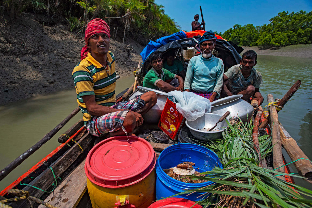 Risk, Ritual, and Survival: The Honey Gatherers of the Sundarbans