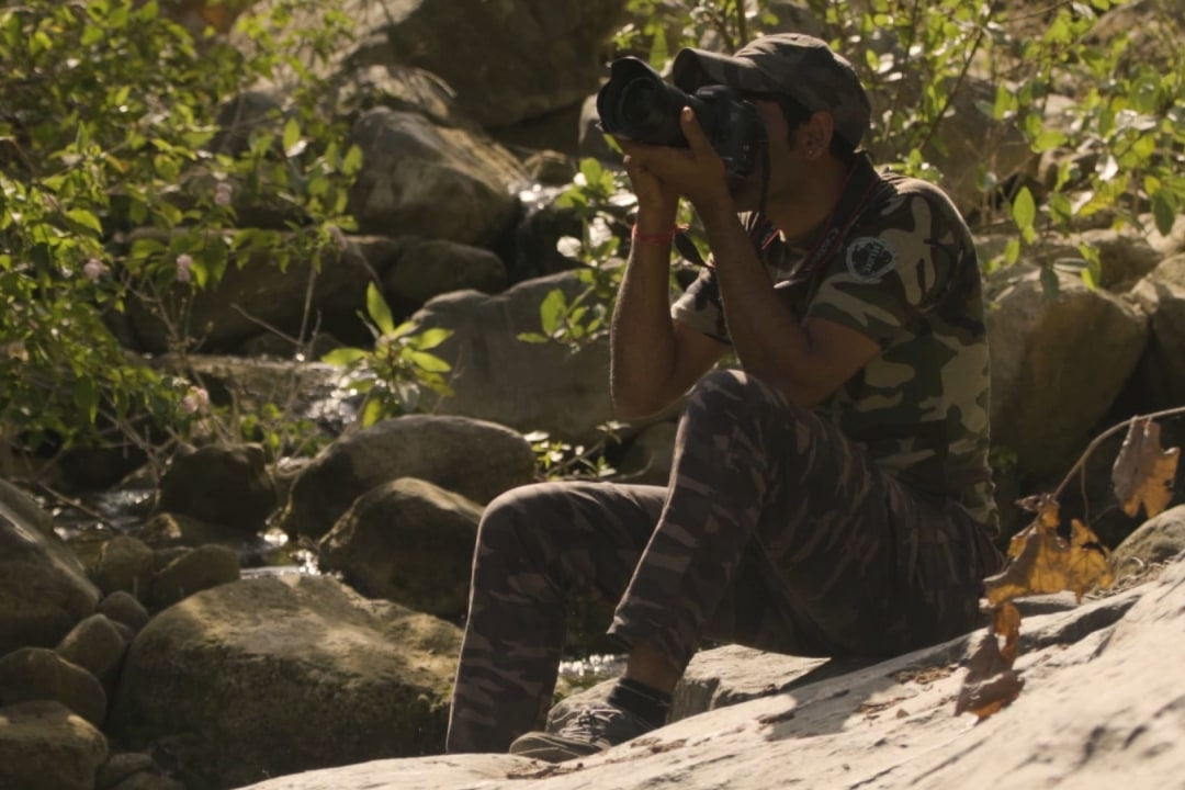 Jungle Tales: Kumbhalgarh Through the Eyes of a Forest Guard