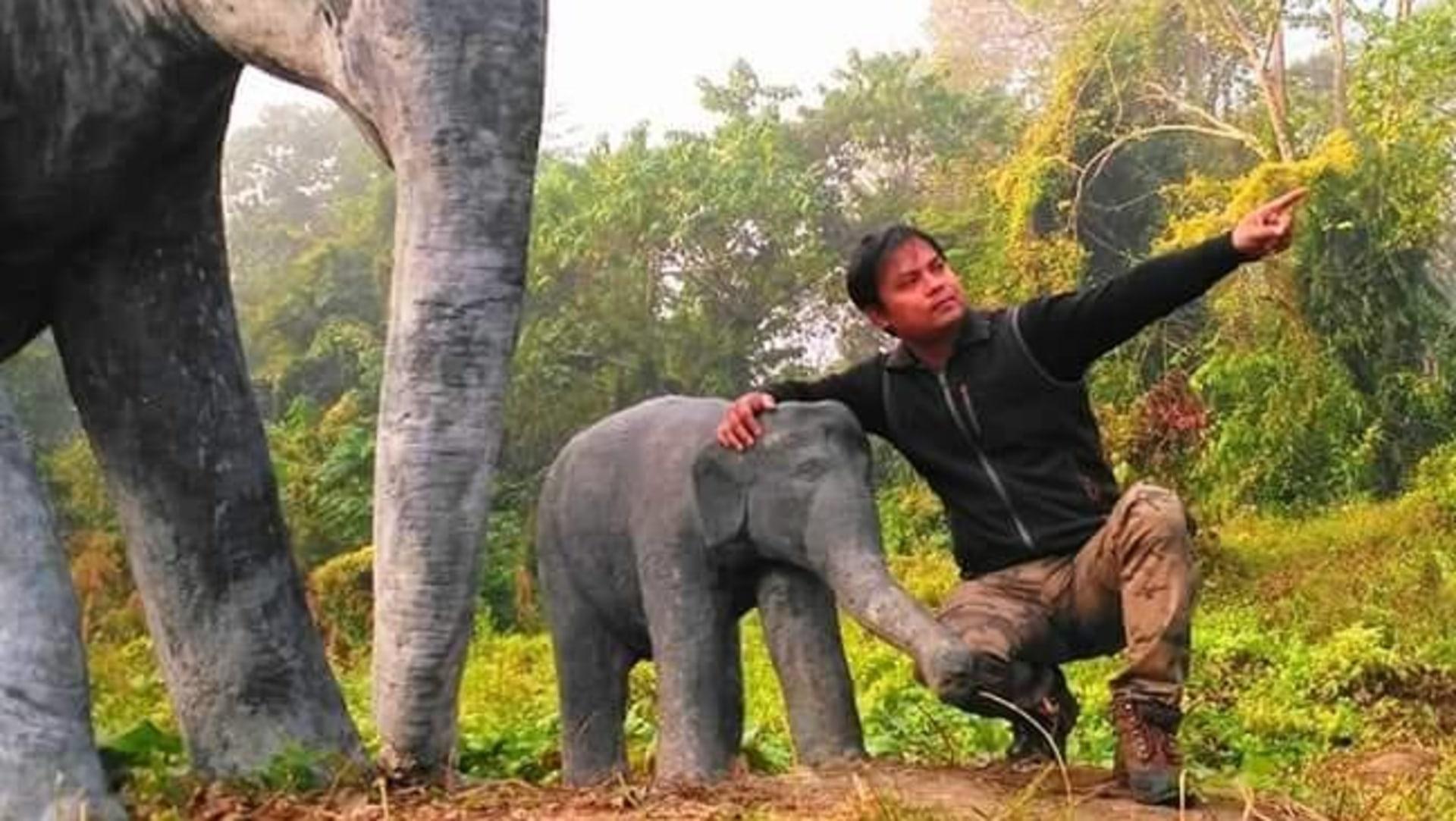 Binod 'Dulu' Bora: Assam's Elephant Man