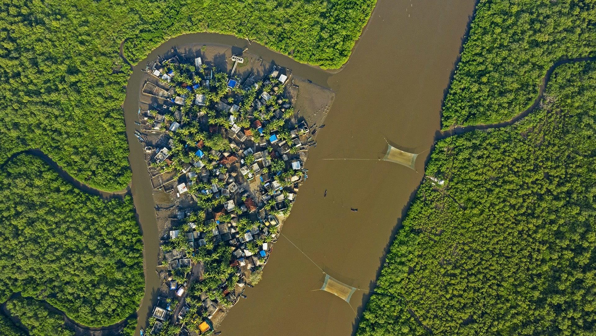 Life and Livelihoods along Coringa's Mangrove Forest