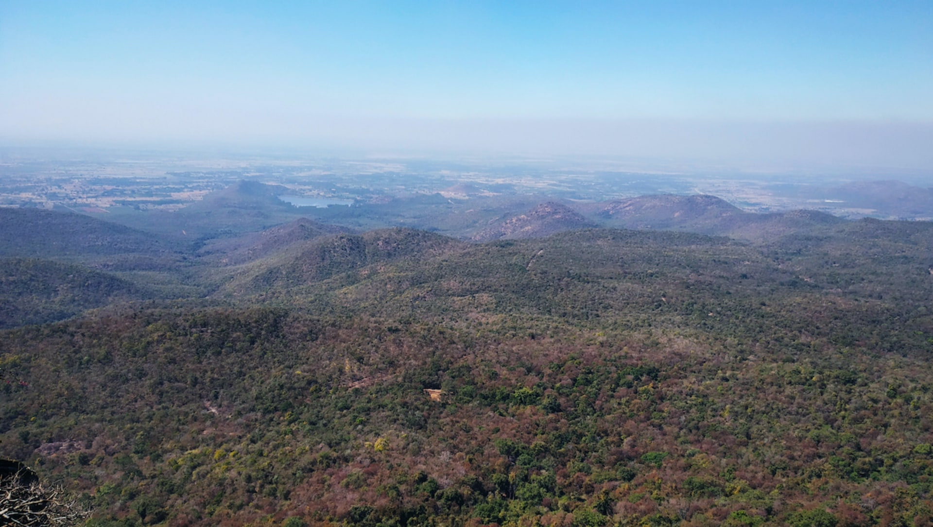 The Ever-Changing Lives of the Soligas in Karnataka's BR Hills