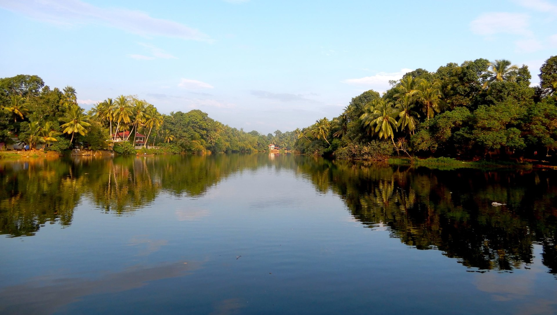Growing With the Flow: The River Pamba and I