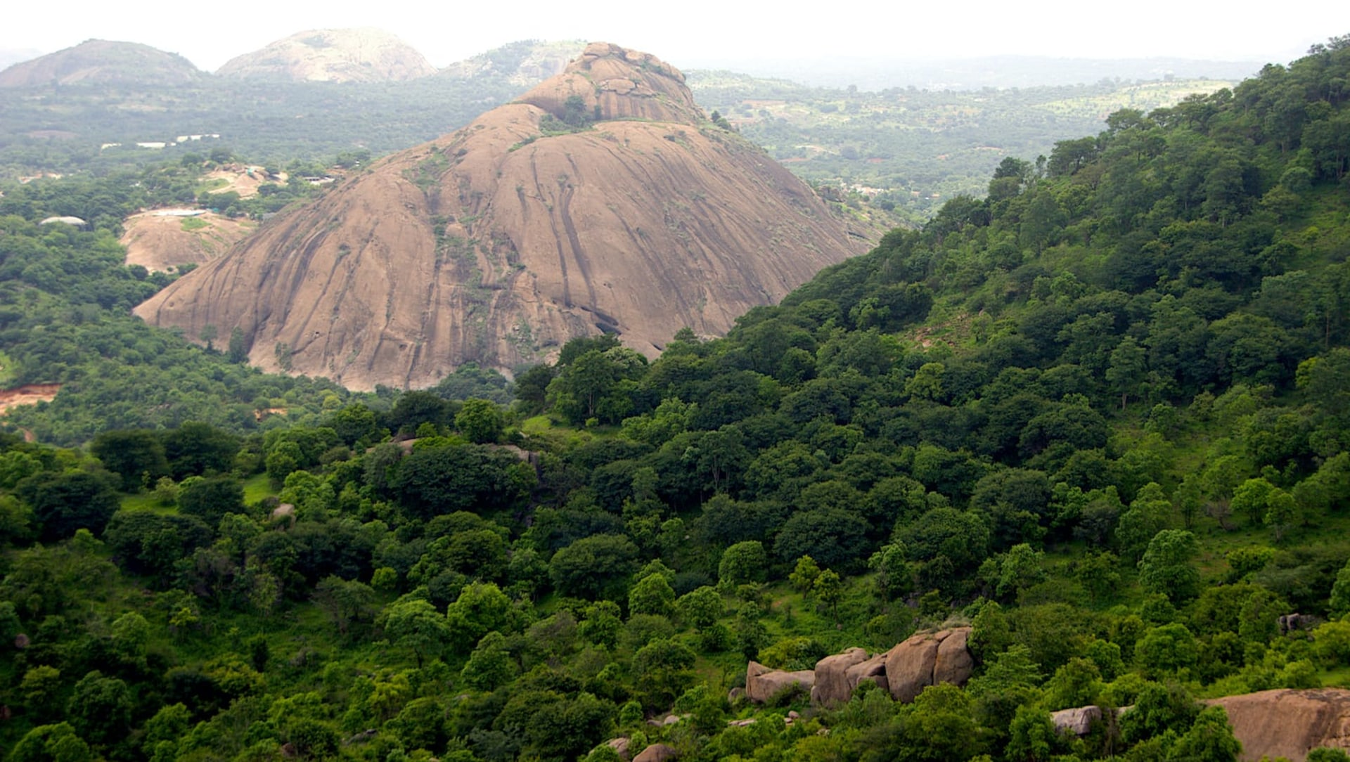 Ramadevarabetta: A Vulture Sanctuary in Rapidly Urbanising Ramanagara
