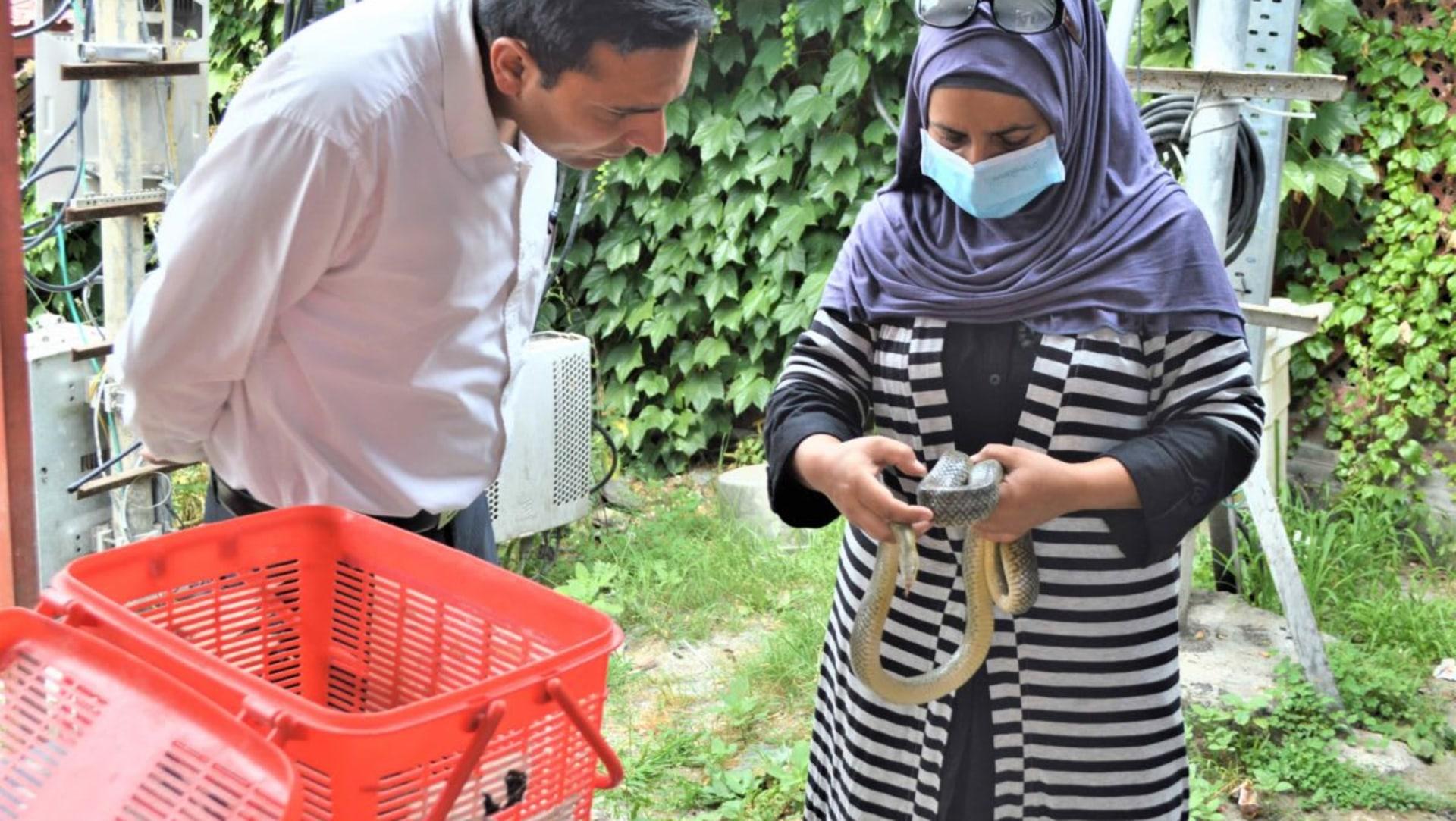 Aaliya Mir: The Woman Who Rescues Wildlife in Kashmir
