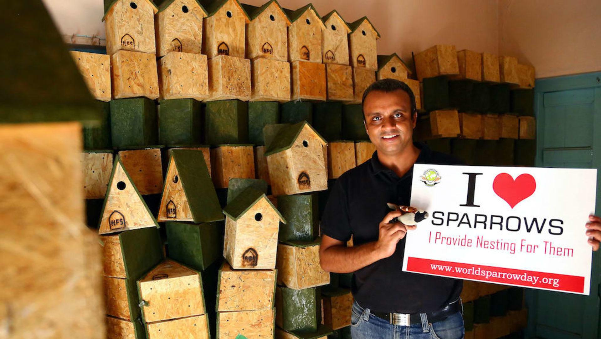 Mohammed Dilawar: A Superhero for the House Sparrow