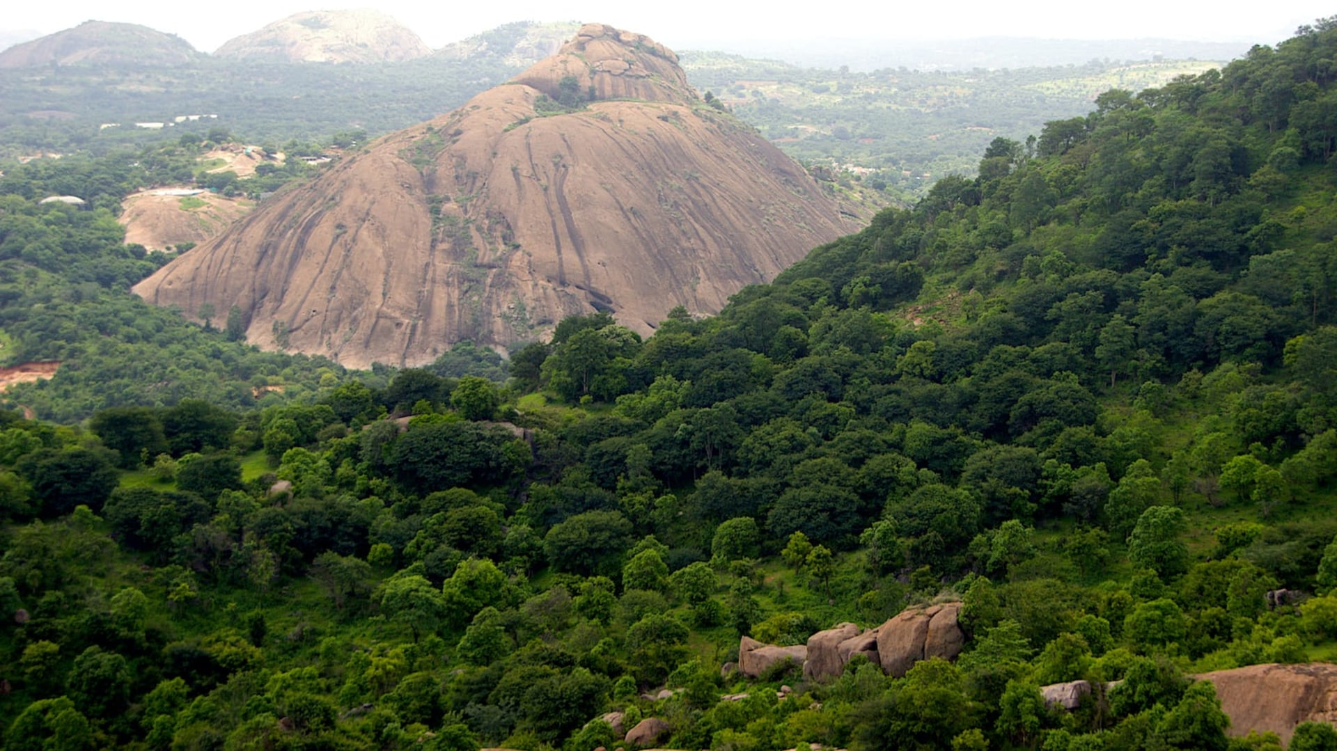 Ramadevarabetta: A Vulture Sanctuary in Rapidly Urbanising Ramanagara