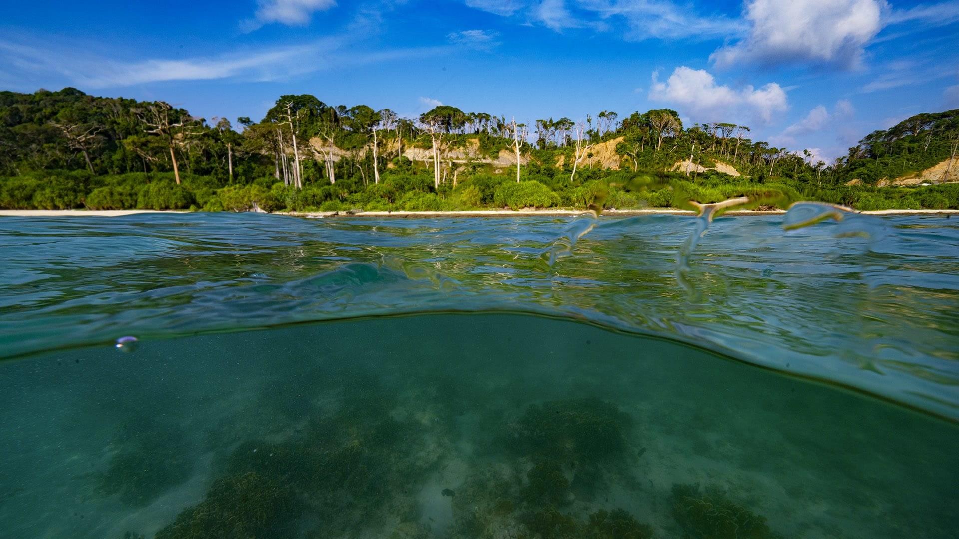 Galathea: A Threatened Paradise at the Edge of the World