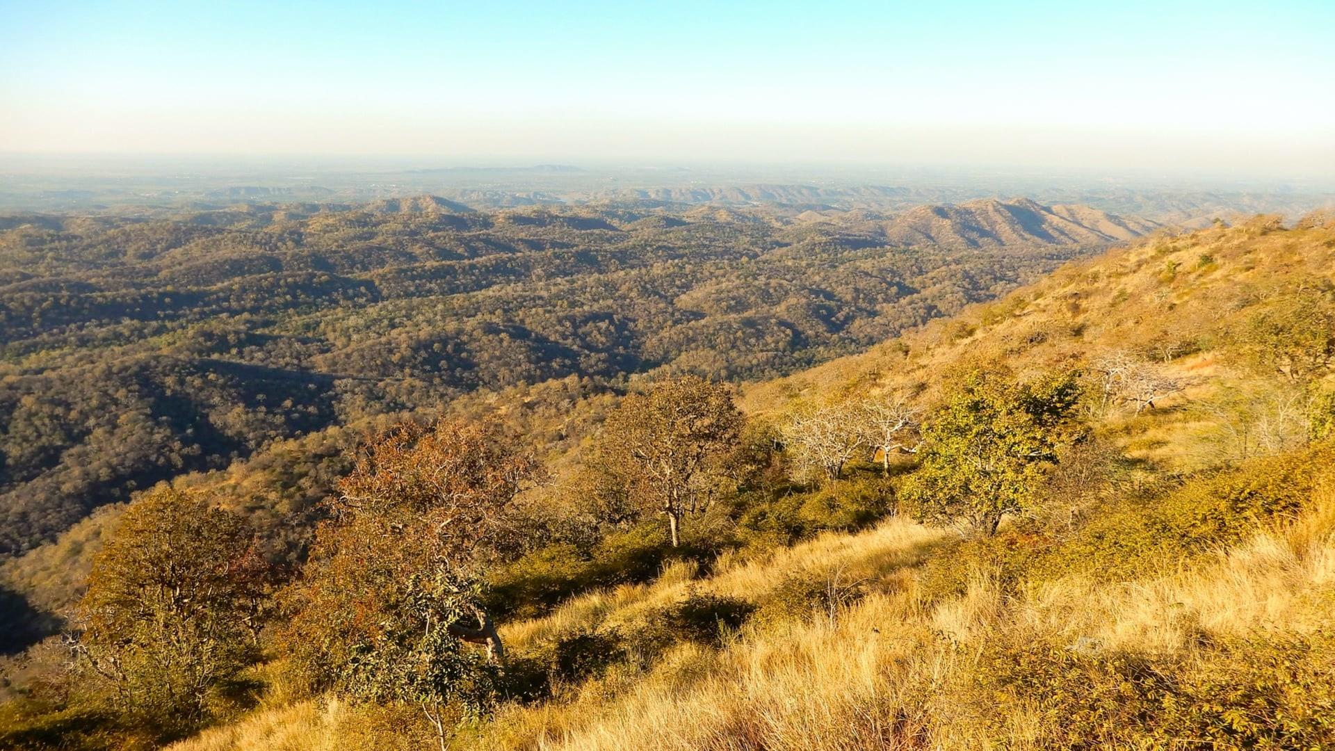 The Ecotone: The Todgarh-Raoli and Kumbhalgarh Sanctuaries of Rajasthan