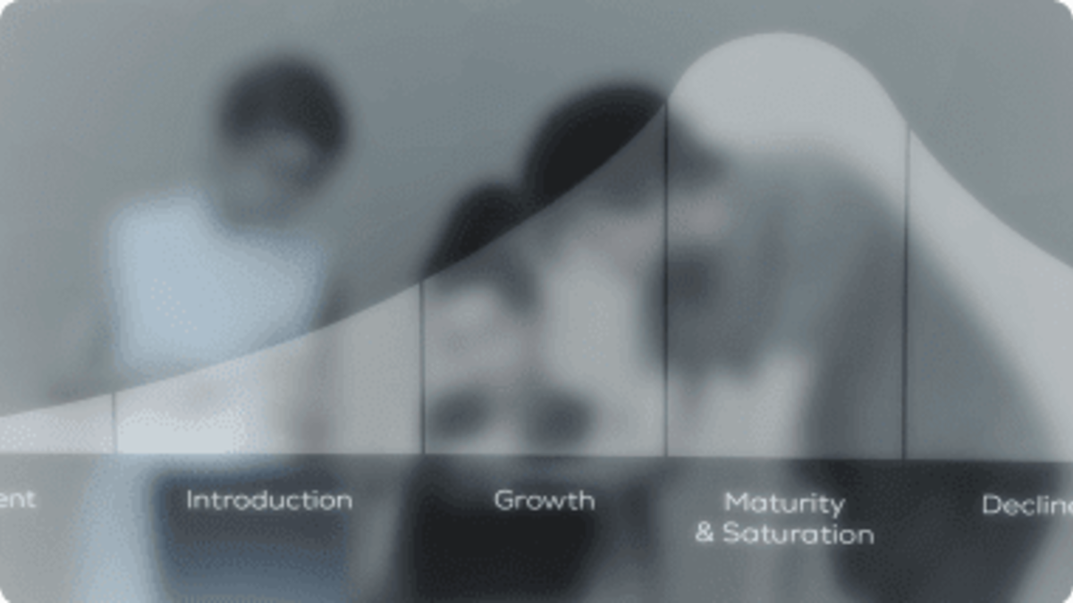 Brand Lifecycle Management