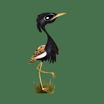Bengal florican