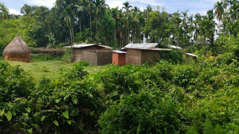 Houses in Rangagora village, which borders on Orang National Park. Women from this village collect minor forest products from the park. Photo: Bikash Kumar Bhattacharya.