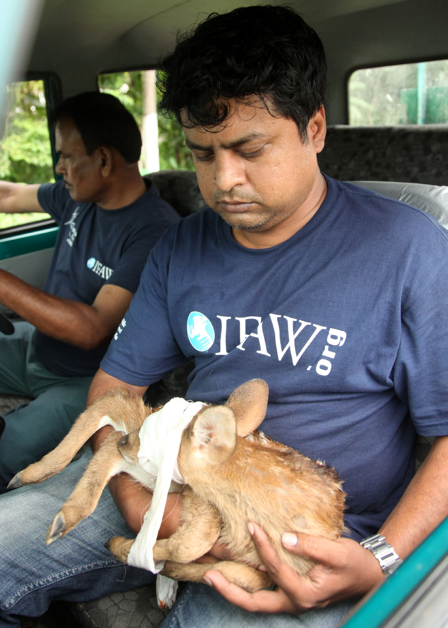 Veterinarian Samshul Ali, on a rescue mission during the floods. Photo: Subhamoy Bhattacharjee/IFAW-WTI