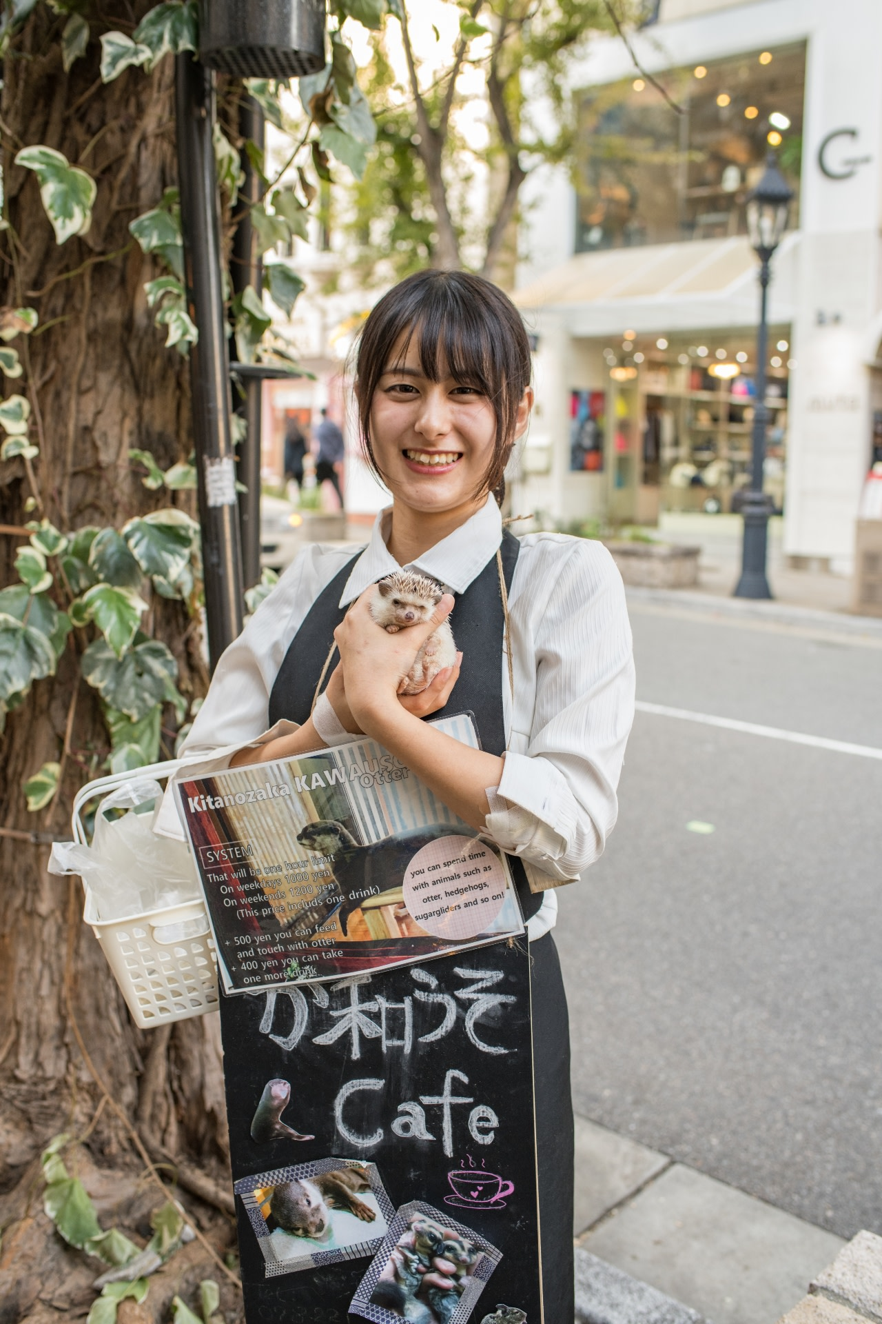 A woman shows advertisements for an otter cafe in Kobe. Pups are captured from the wild to meet the demand of such cafes, which have mushroomed in Japan in the past few years. Photo: Michael Gordon/Shutterstock