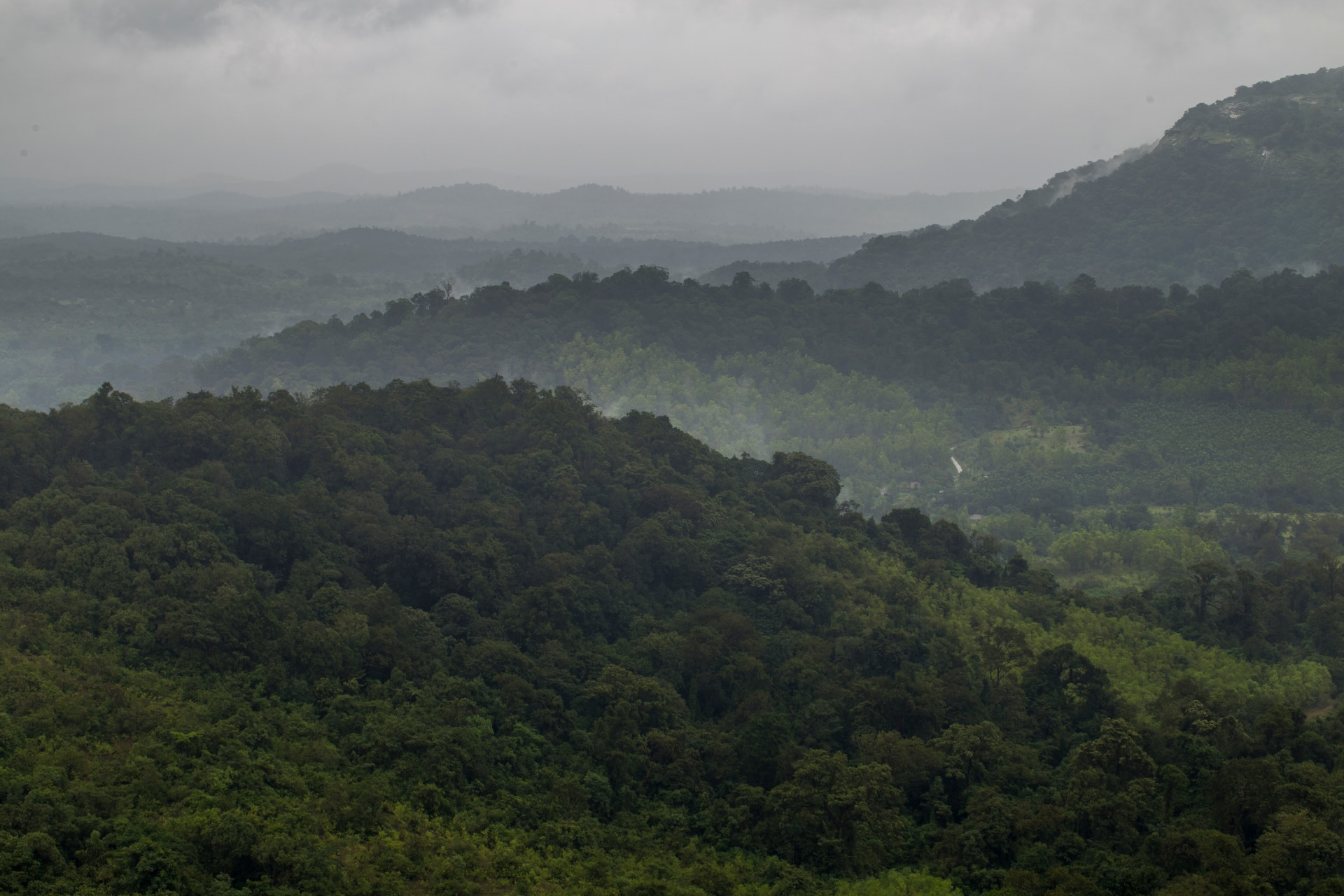 Heavy rain-bearing clouds from the Arabian Sea open up over Agumbe, contributing to making it one of the wettest places in the country. Photo: Saurabh Sawant  Located in the central Western Ghats of Karnataka, Agumbe's hillsides are a mix of rainforests, open meadows, and grasslands. Cover Photo: Pradeep Hegde