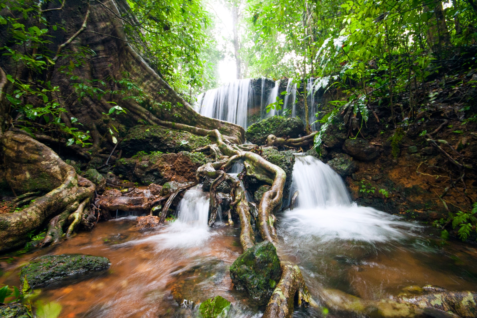 Waterfalls and cascades abound in Agumbe and can be seen in all their glory during the monsoon. Photo: Saurabh Sawant