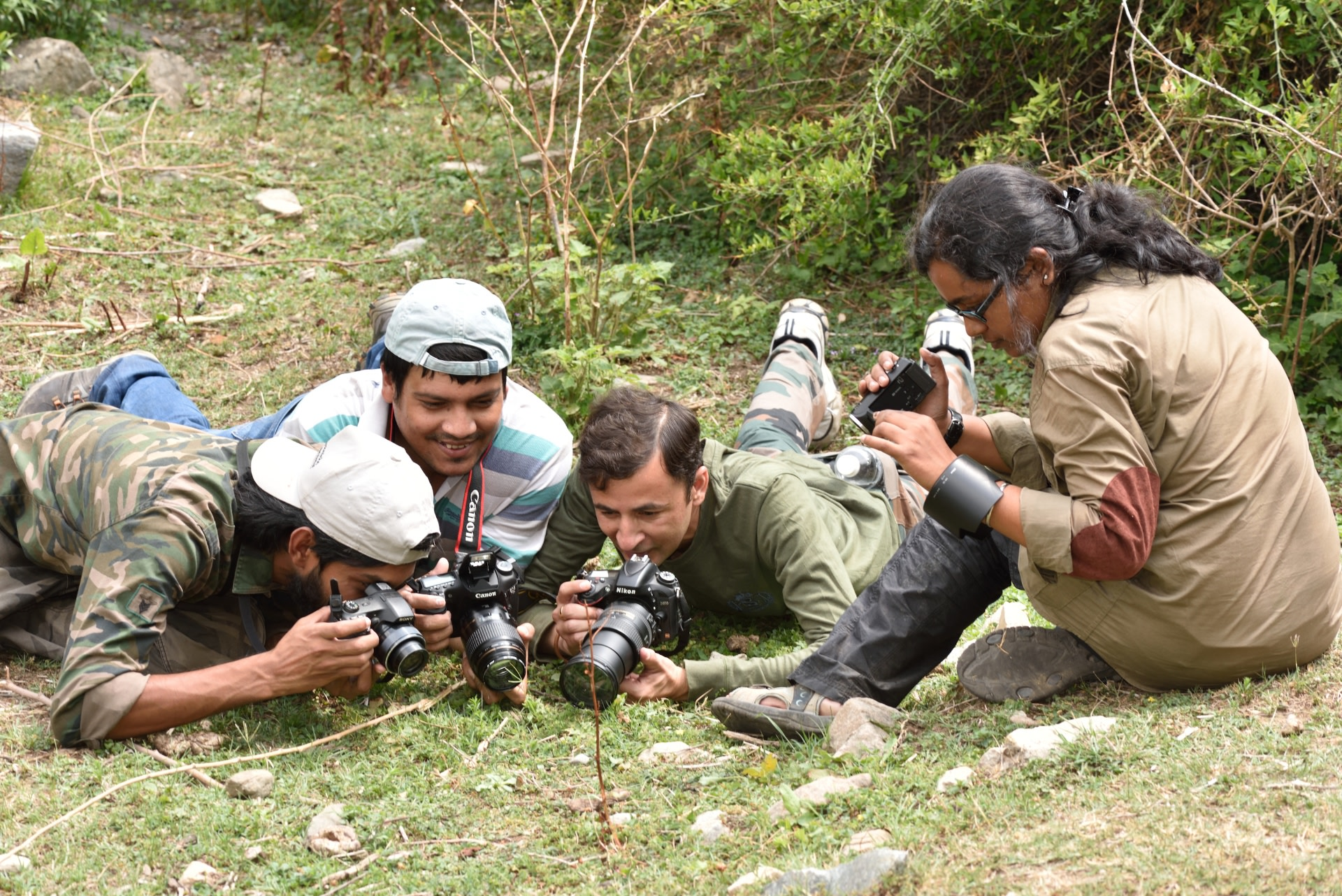 Festival participants at Chiana Khud, Devalsari photograph an albocerulean (Udara albocaeruleus), a tiny, uncommon lycaenid butterfly, protected under the Indian wildlife act. Photo: Sanjay Sondhi  A mating pair of the sexually dimorphic lichen moth, Cyana coccinea leaves visitors enthralled at Pawalgarh. Cover Photo: Sanjay Sondhi