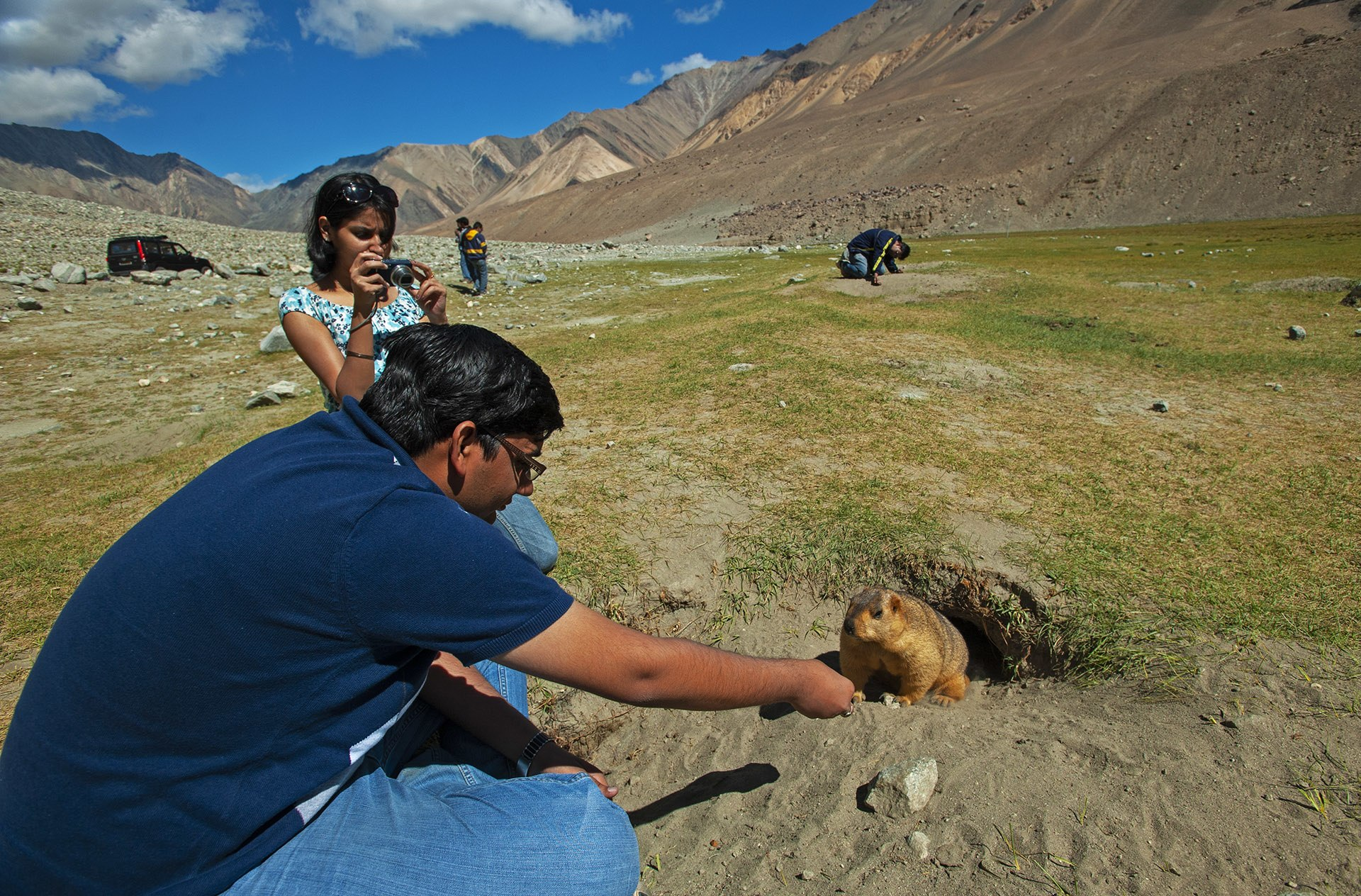 Feeding any wild animal is an unhealthy practice that all tourists must completely stop. Not only is it unhealthy for the marmot or other animal, it creates dependence, leads to increased road kill as animals seek out cars and other human habitation, and can lead to injury or the spread of disease. Photo: Dhritiman Mukherjee