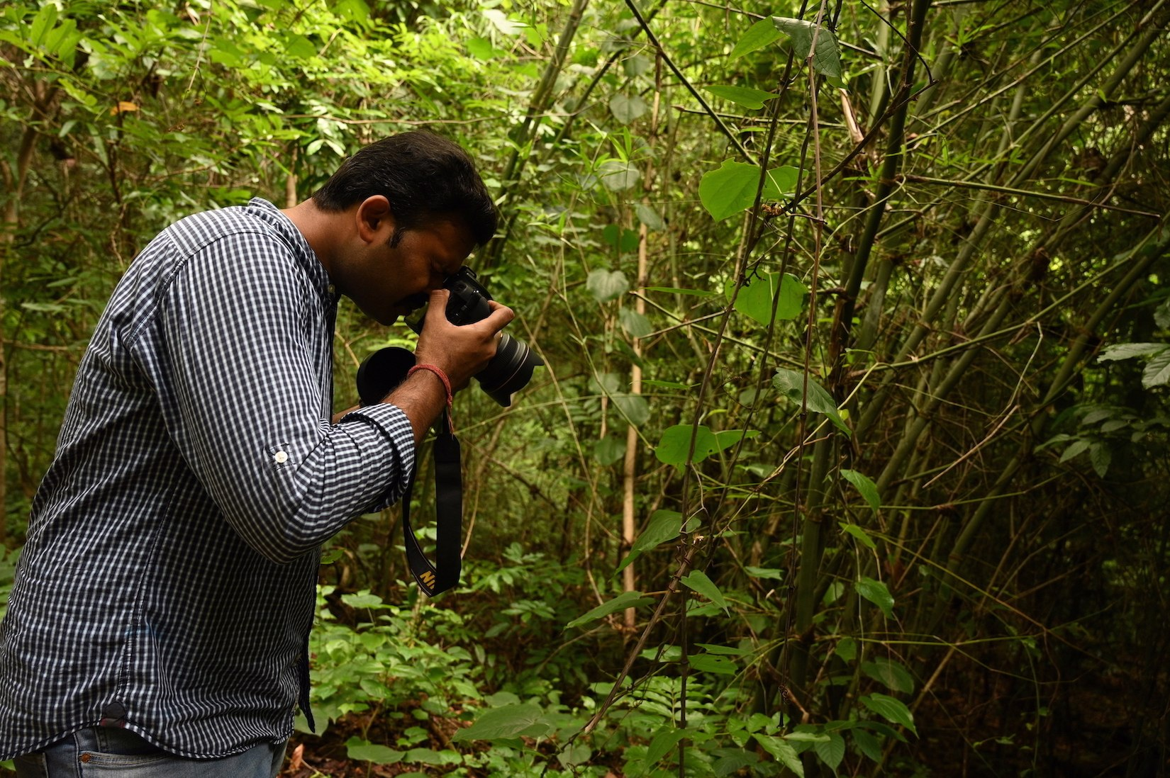 Anant Shankar's interests in conservation span creatures large and small. In Andhra Pradesh's Papikonda National Park, he announced a new species of Himalayan moth (Eucyclodes gavissima) on Jan 10, 2020. It was the highlight of the three-day butterfly workshop being conducted by the Forest Department. Photo: Srikanth Mannepuri