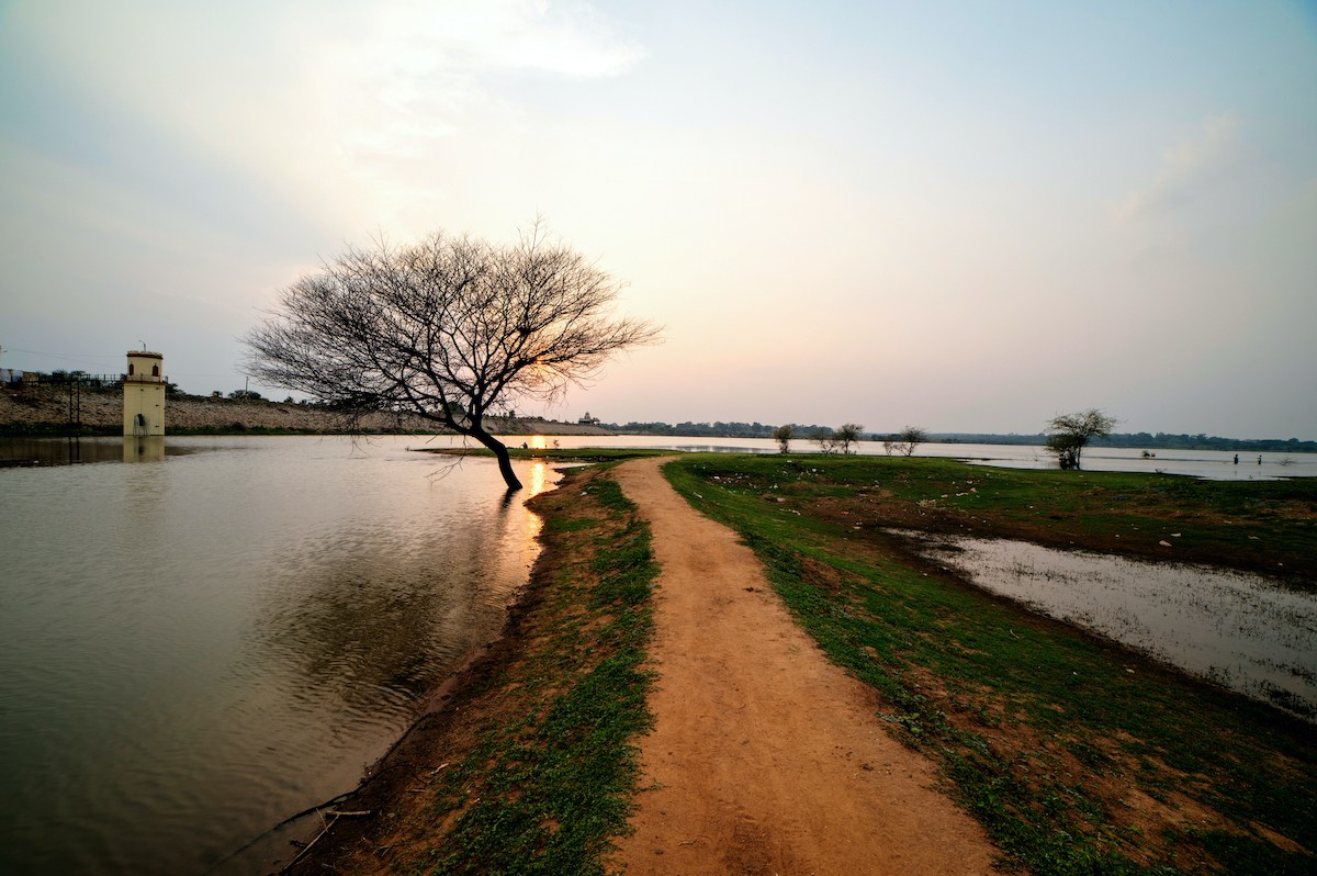 Hesaraghatta is one of the largest lakes of Bengaluru. Due to lack of maintenance, many of the other lakes of Bengaluru have either dried up or have highly contaminated water. Photo: Bala Bhat/Shutterstock