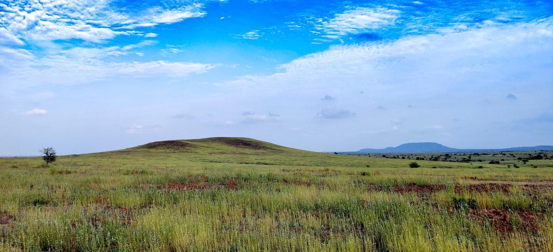 Pristine grasslands like Saswad are forgotten ecosystems on the Indian conservation map. Photo: Mihir Godbole