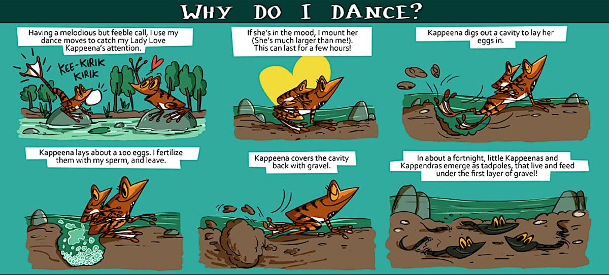 Comic: Rohan Chakravarty
