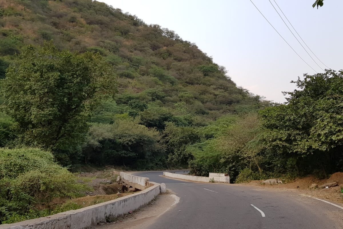Aravallis at the border of Delhi plays the role of green lung for millions of people of Delhi-NCR region. Photo: Hridayesh Joshi  Cover photo: A picture of the hills of Aravallis. Cover photo: Amit kg/Shutterstock