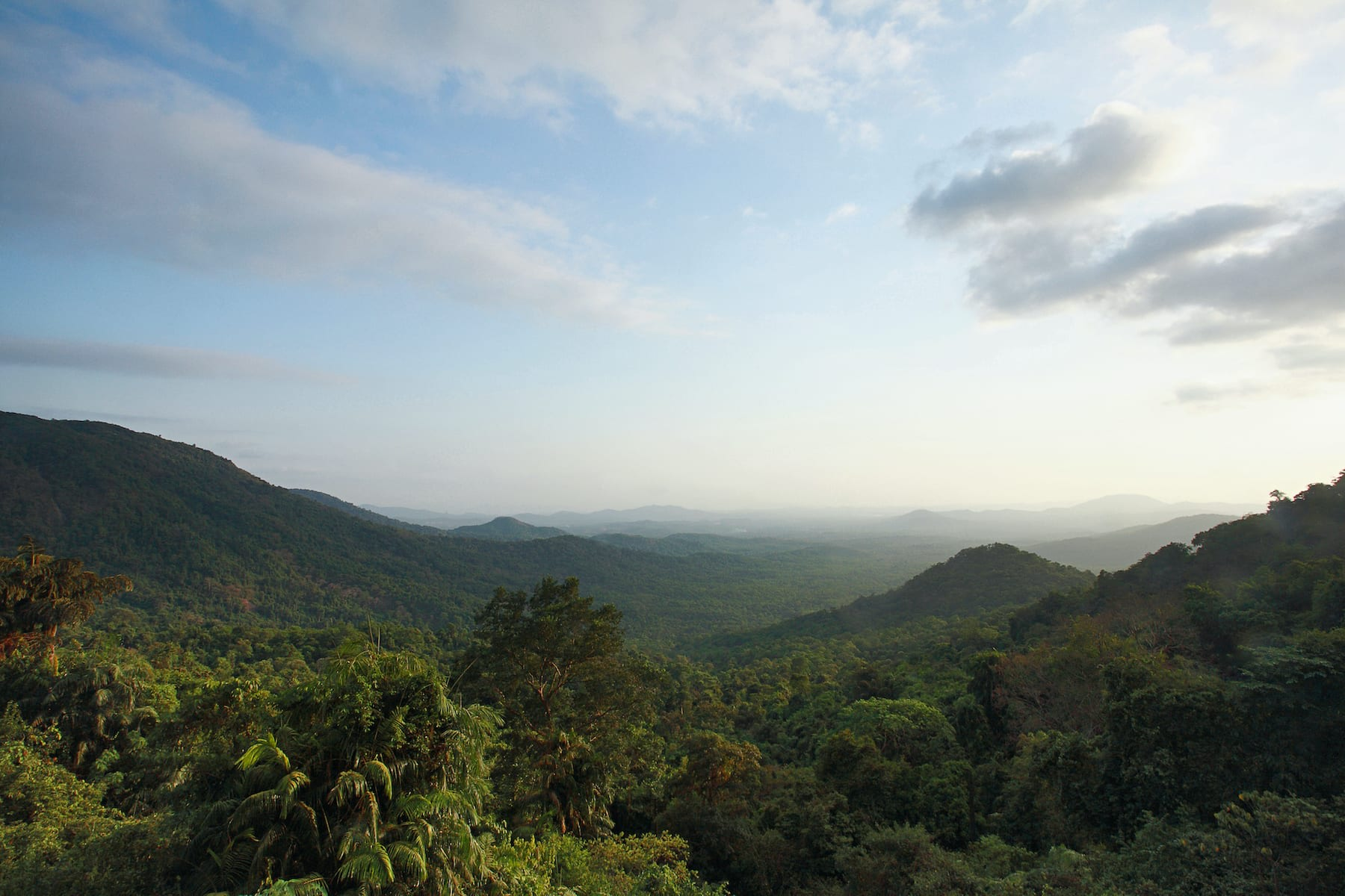 Mollem National Park is a part of the Western Ghats, one of the world's eight most significant biodiversity hotspots. The park's mountain ranges are older than the Himalayas. Photo: RealityImages/Shutterstock  Cover: Dudhsagar, literally meaning a sea of milk, is one of the tallest waterfalls in India. The river Mandovi, one of Goa's main rivers, plummets over peaks of the Western Ghats to form these gushing tiered falls. Cover photo: Nirmal Kulkarni