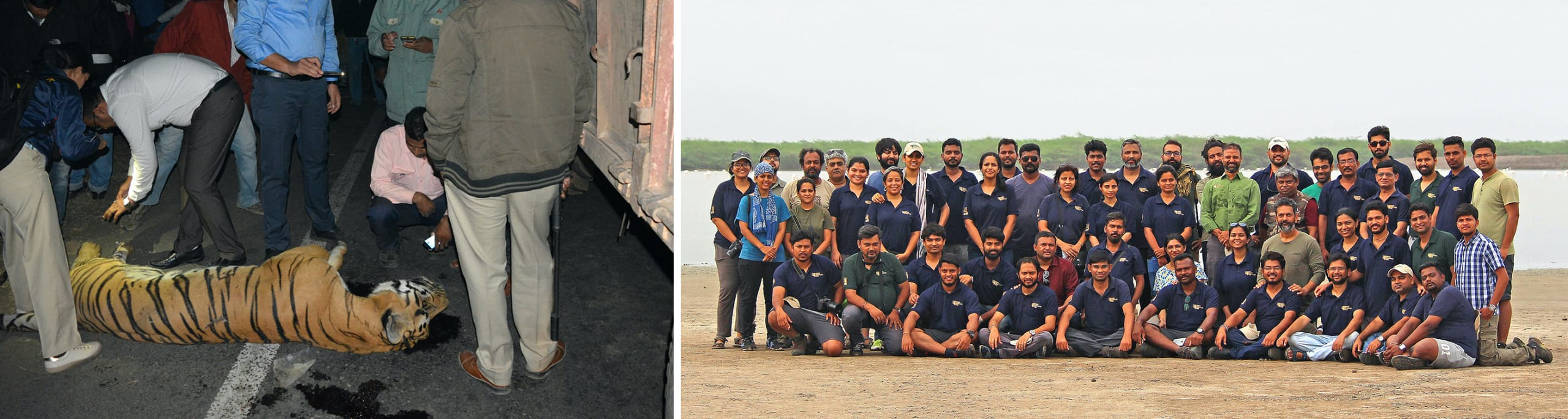 (Left) Anish Andheria attends to a tiger roadkill. (Right) Anish Andheria with his WCT team.  Photos courtesy: Sheetal Kolhe/WCT (left), WCT (right)
