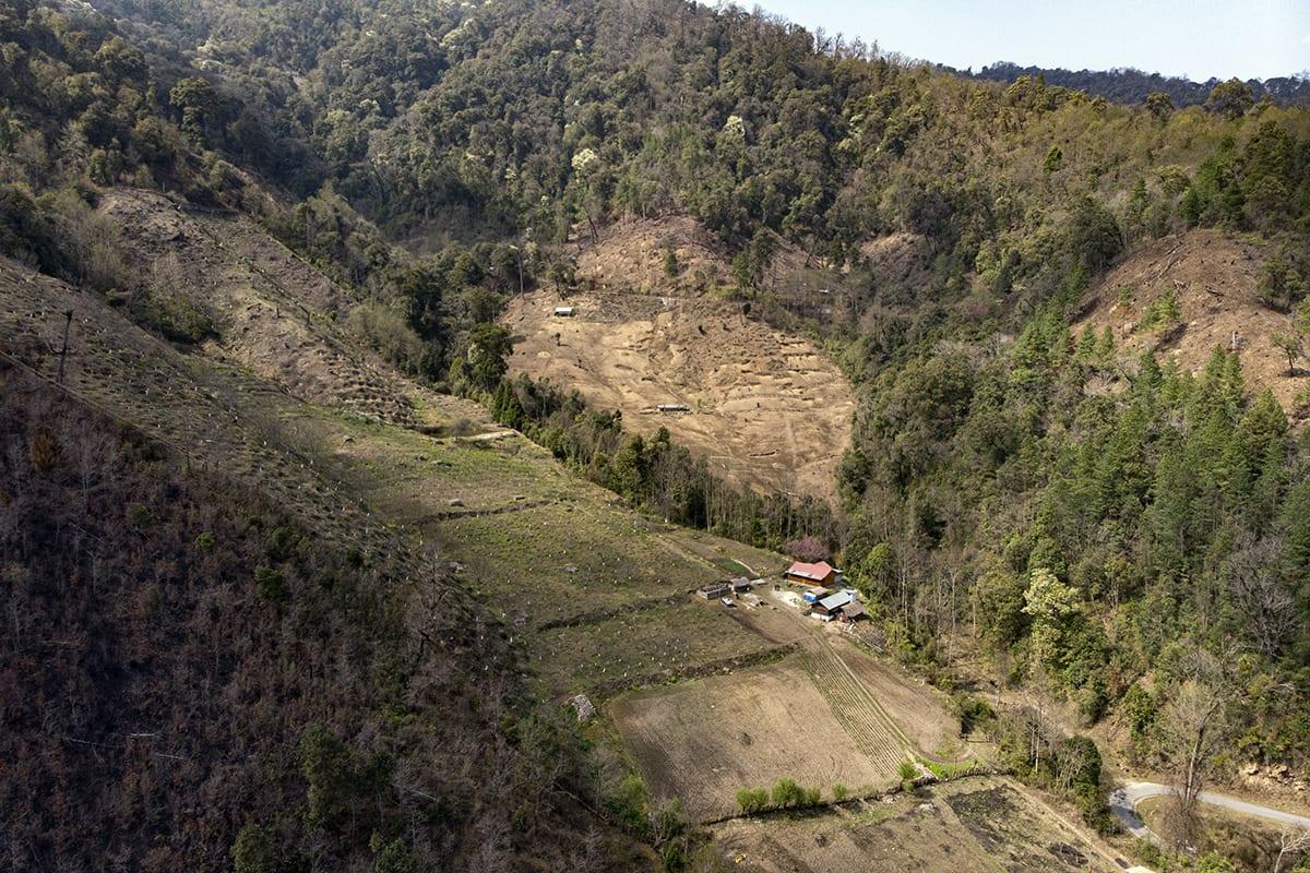 Apple orchards and farms in the mountainous landscape of Shergaon, Arunachal Pradesh. Photo: Sumit Das