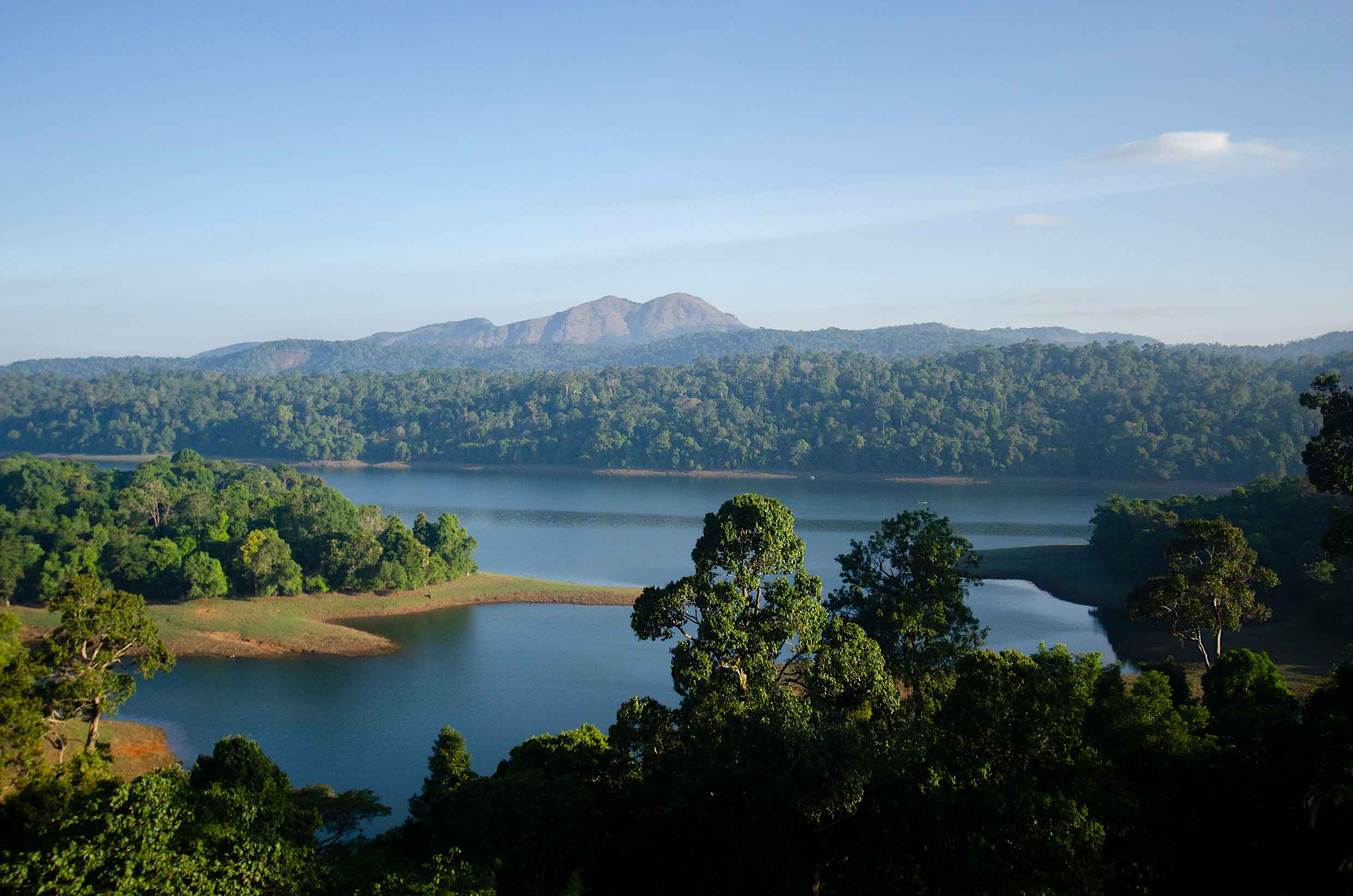 The Parambikulam Tiger Reserve is sandwiched between the Anamalai and the Nelliampathy hills. Three major rivers — the Parambikulam, the Sholayar and the Thekkedy — run through landscape feeding lakes, reservoirs and streams. Photos: Pravin Shanmuganandam (top), Ganesh Raghunathan (above)