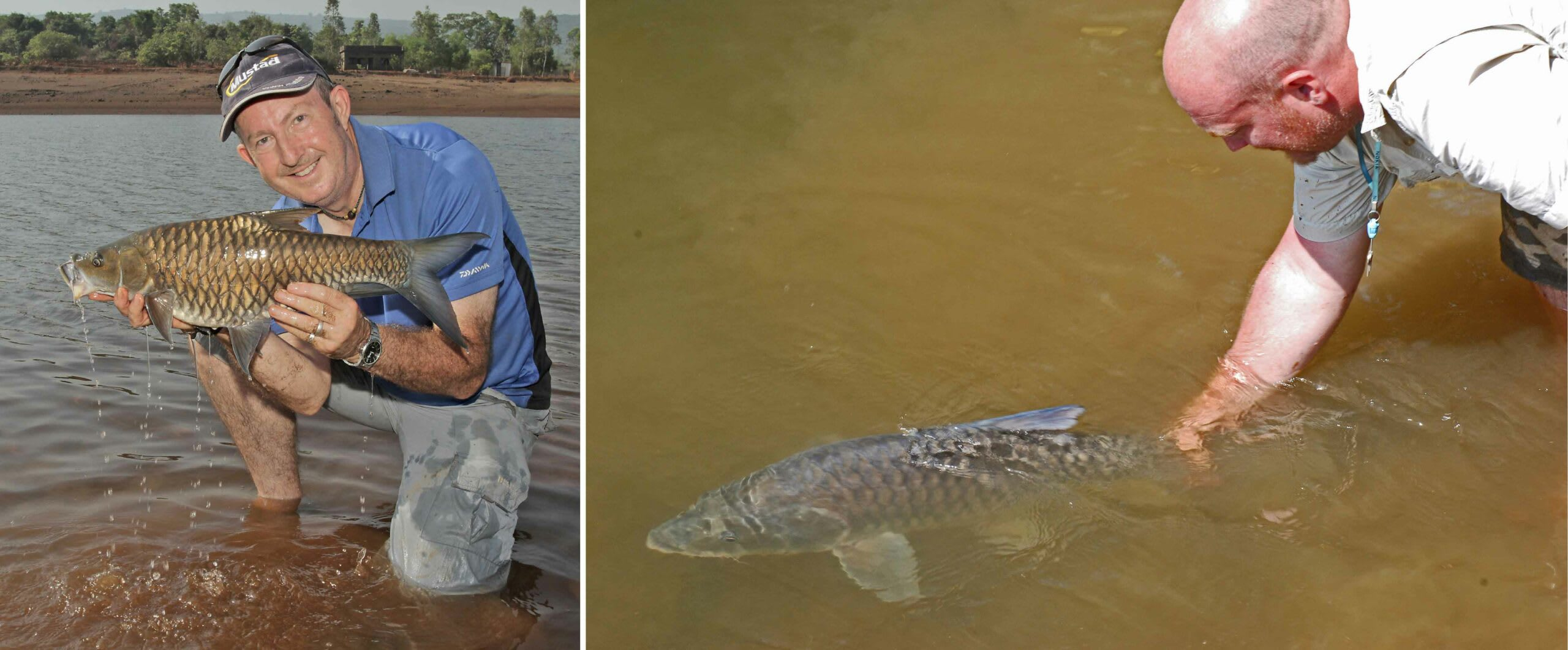 (Left) Steve Lockett, Executive Director of the Mahseer Trust, holds a Tor khudree caught in Maharashtra. He has been working to conserve mahseer and their habitat for the last decade. (Right) UK angler, Ken Loughran, is known for capturing the largest mahseer — a humpback mahseer — that weighed around 54 kg. Loughran has spent many years fishing in the Cauvery. Here, he releases a Tor khudree back into the river. Photos: Steve Lockett