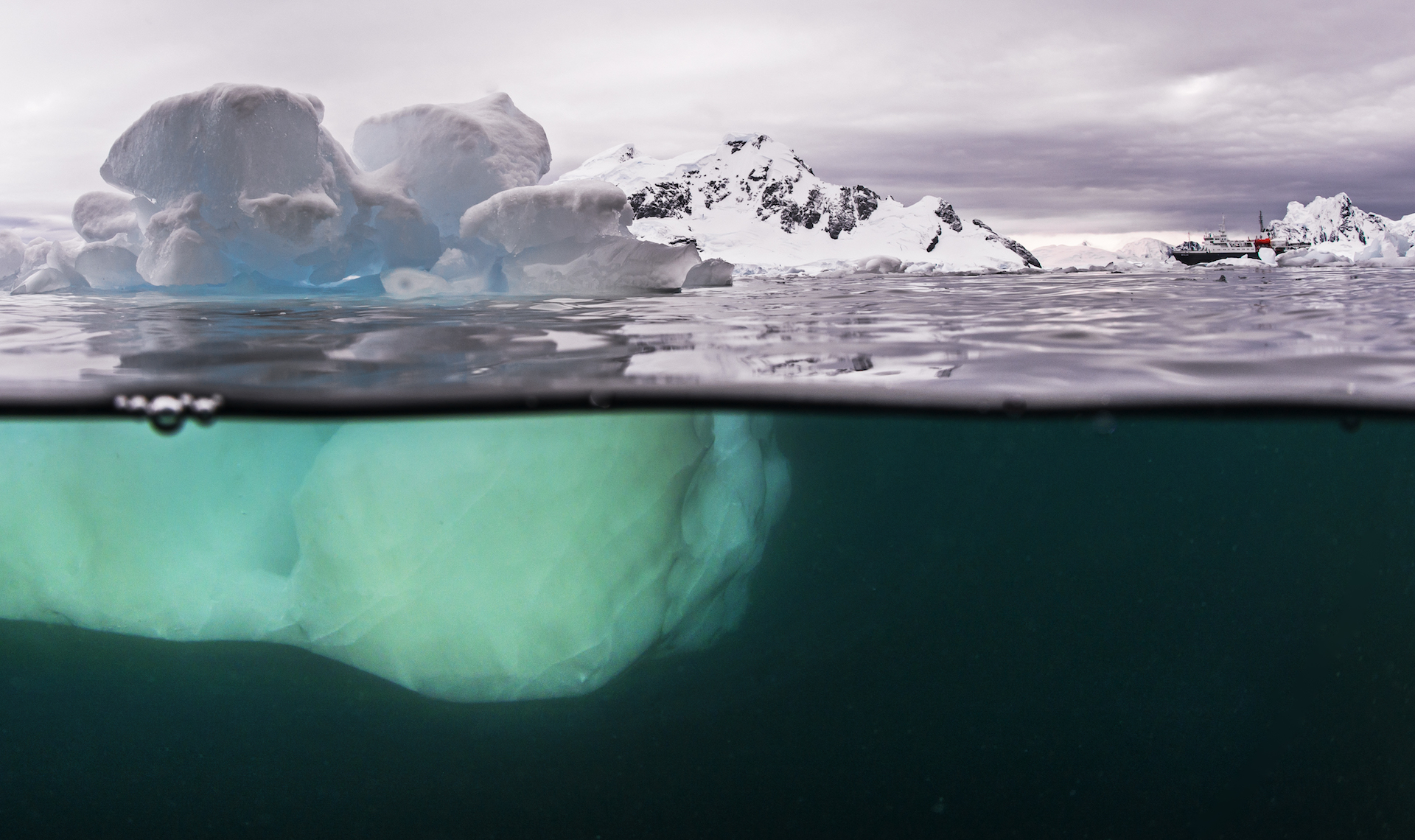 Sculpted by the wind, the ice takes on exquisite forms, both above and below the surface. The icebergs are titanic in size, often spanning several square kilometres, and dwarfing the ship as seen in this image.