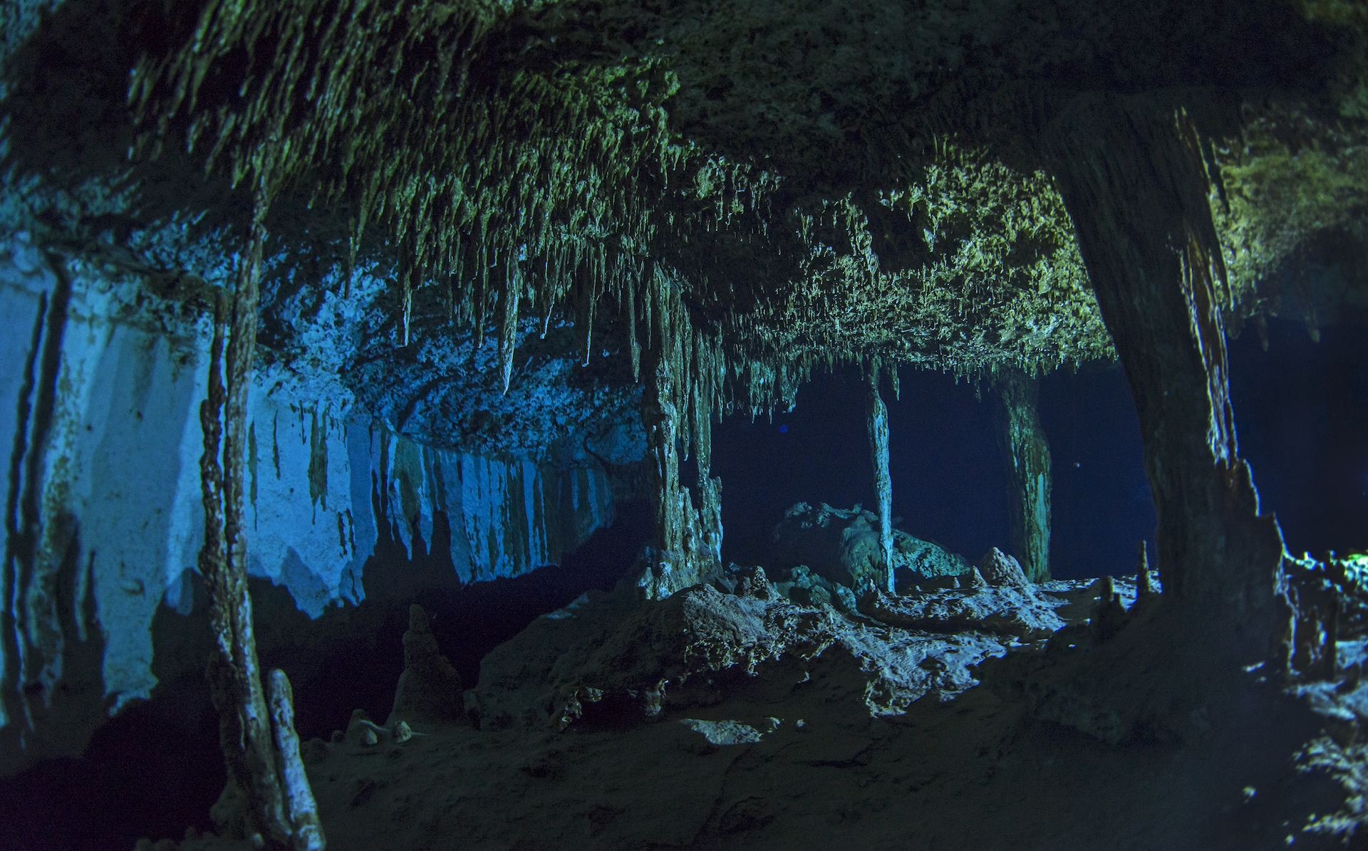 Dos Ojos (two eyes) is a stunning cenote with fantastic stalactite and stalagmite formations, a bat cave, small fish, and a type of freshwater shrimp in the beautifully clear fresh water. Further into its depths I set up halogen lights in the dark cave to photograph the beauty of the columns.