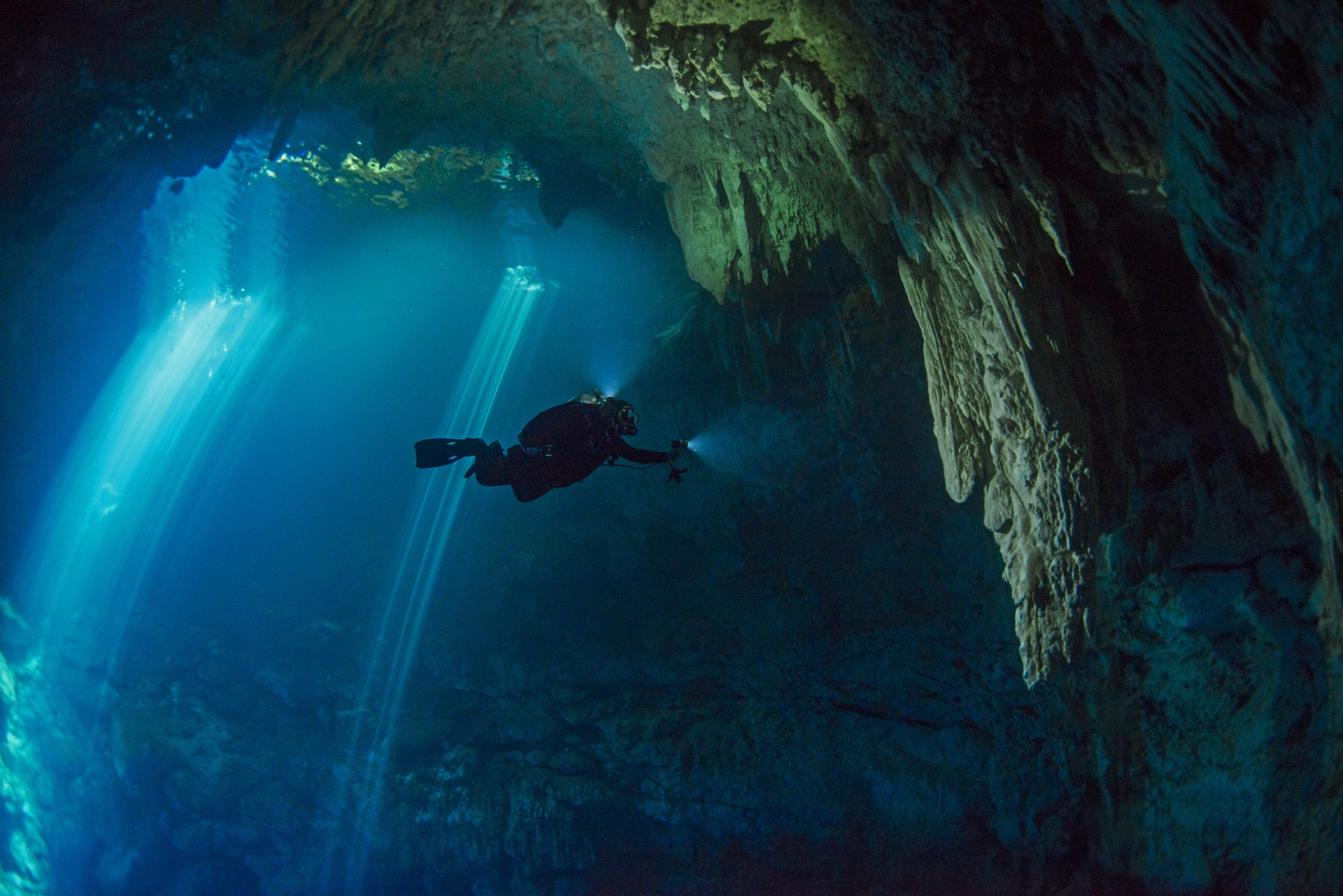 Narrow beams of light can be seen coming through the various entrances of the El Pit Cenote. The small entrance belies the size of the large cylindrical cavern we entered, which led further to many passages and caves. Ten metres down, an overhang with beautiful stalactites came into sight, and then, the hydrogen sulphide cloud, a mix in a turgid blur, followed by saltwater.