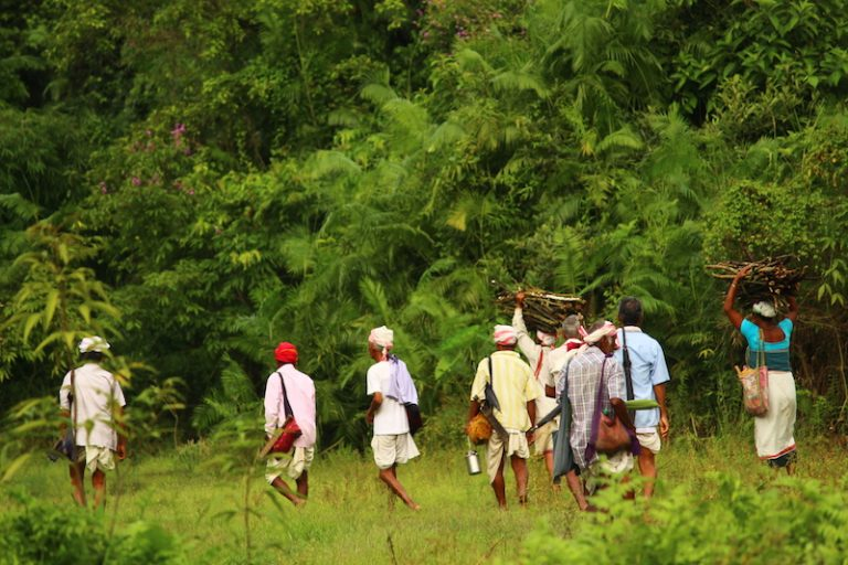 A group of villagers in Pani Dihing protected forests in Assam. Photo: Sudakshana Gogoi.