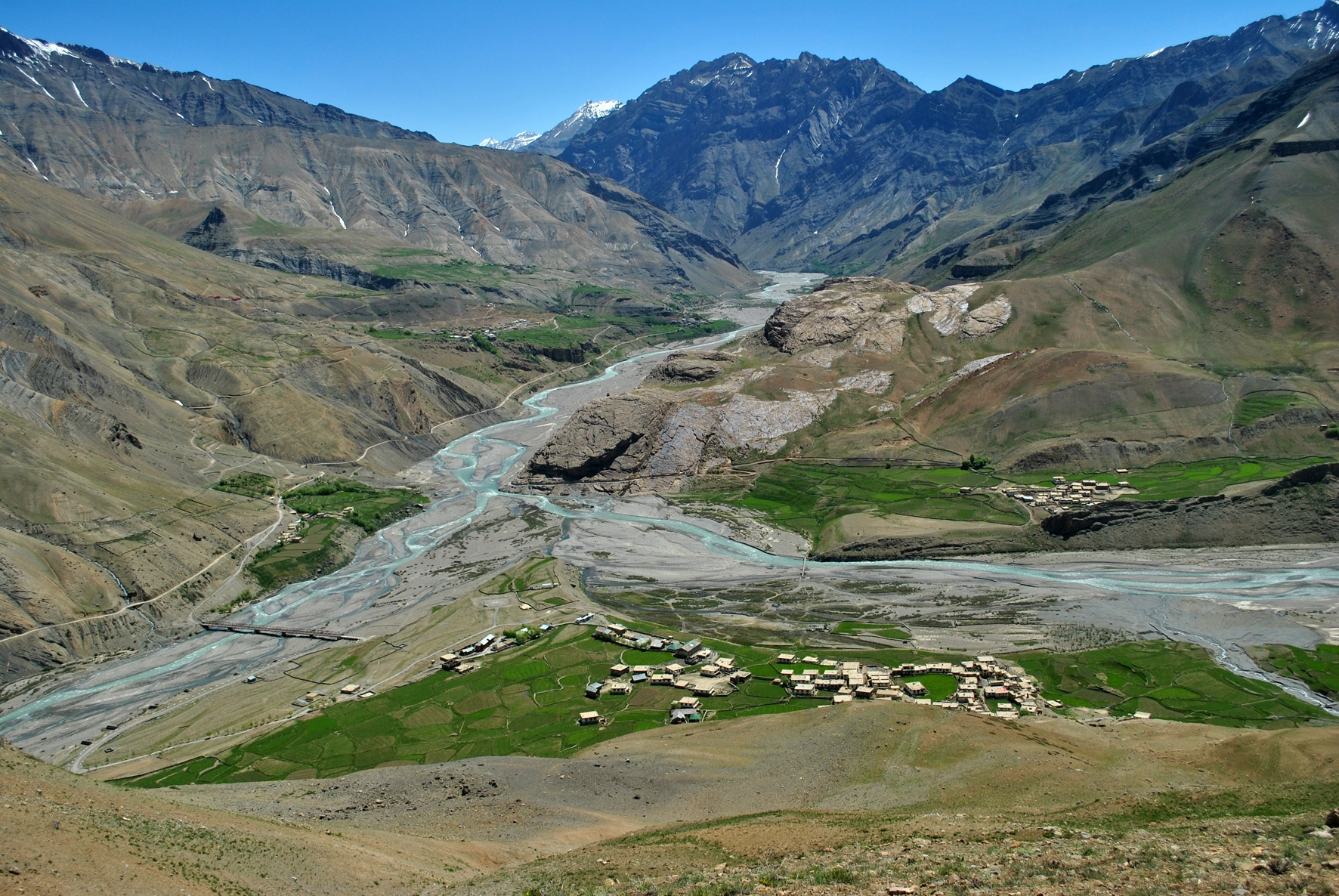 Sagnam village is situated at the confluence of the Pin and Parahio rivers in the Pin Valley of Himachal Pradesh. Photo: Abhishek Ghoshal  Weighing an average of around 90 kilos, the Himalayan ibex roams the western Himalayas in Pakistan and India, usually at elevations of 3,200 m or higher. Cover Photo: 123shob123 - CC BY-SA 4.0